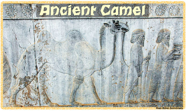 Ancient Camel - Bible Printable
